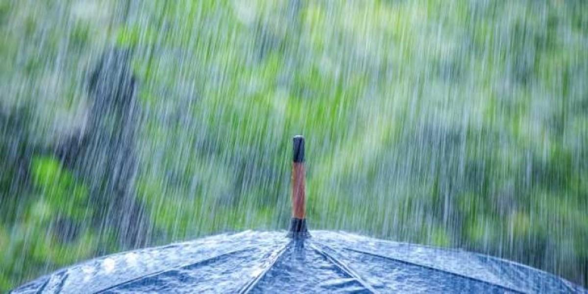 لماذا تبدو رائحة المطر طيبة ؟ ومن أين تأتي هذه الرائحة !